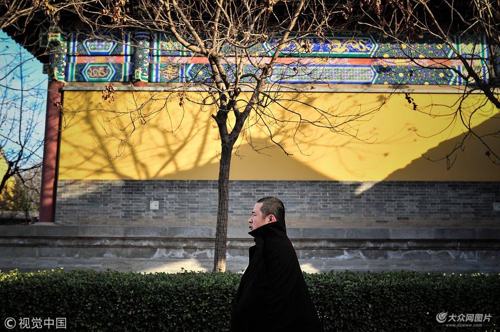 英语老师剃度:真正的佛系并非逃避