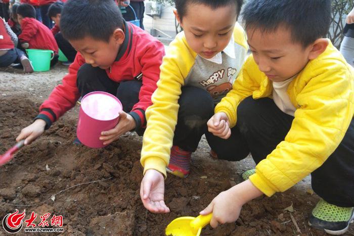 播种春天播撒希望 丁佳幼儿园举行植树节活动图片