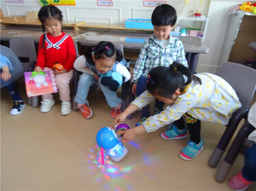紫苑幼儿园开展快乐分享日主题教育活动
